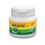 Amylactiv Digest, 90 capsule