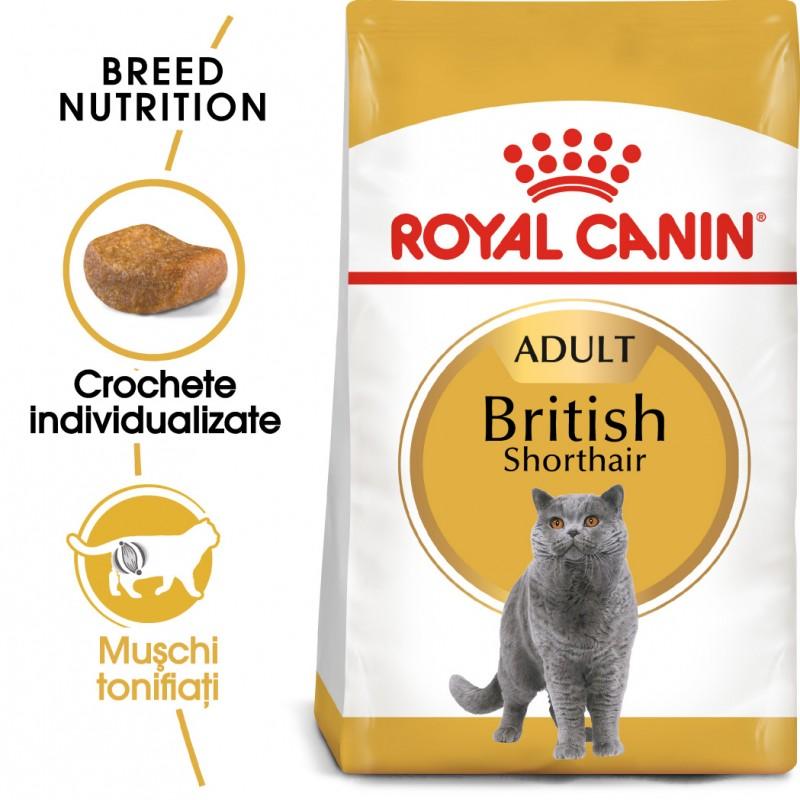 Hrana uscata Royal Canin British Shorthair adult