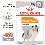 Royal Canin Coat Care Umeda-12x85g