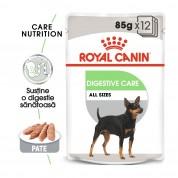 Royal Canin Digestive Care Umeda-12X85g