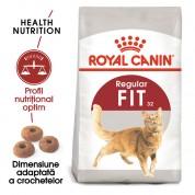 Hrana uscata Royal Canin Fit 32