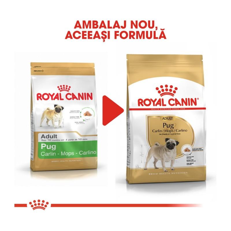 Royal Canin Pug Adult