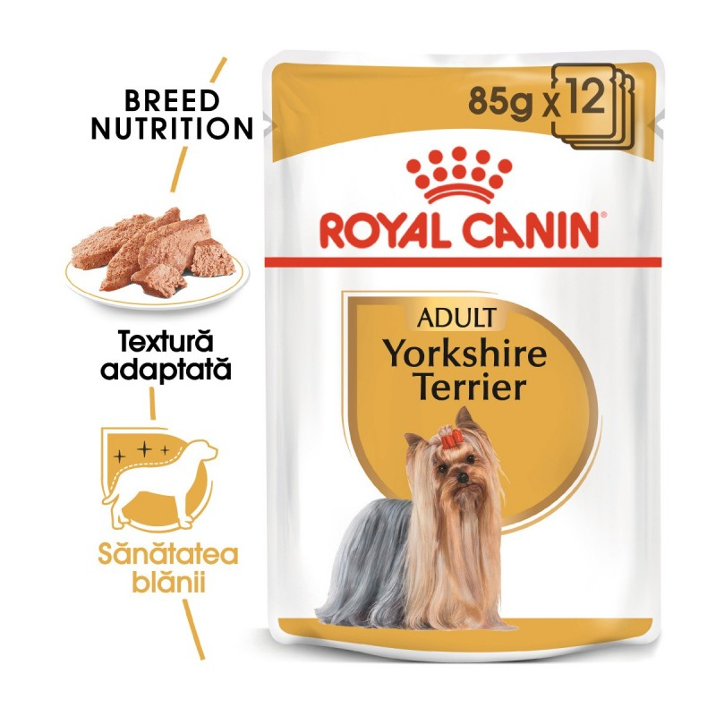 Royal Canin Yorkshire Terrier Umeda-12x85 g